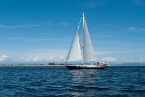 Adesso sailing